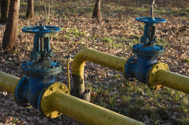 Old gas pipes with large overlapping taps are laid underground in the yard. Premium Photo
